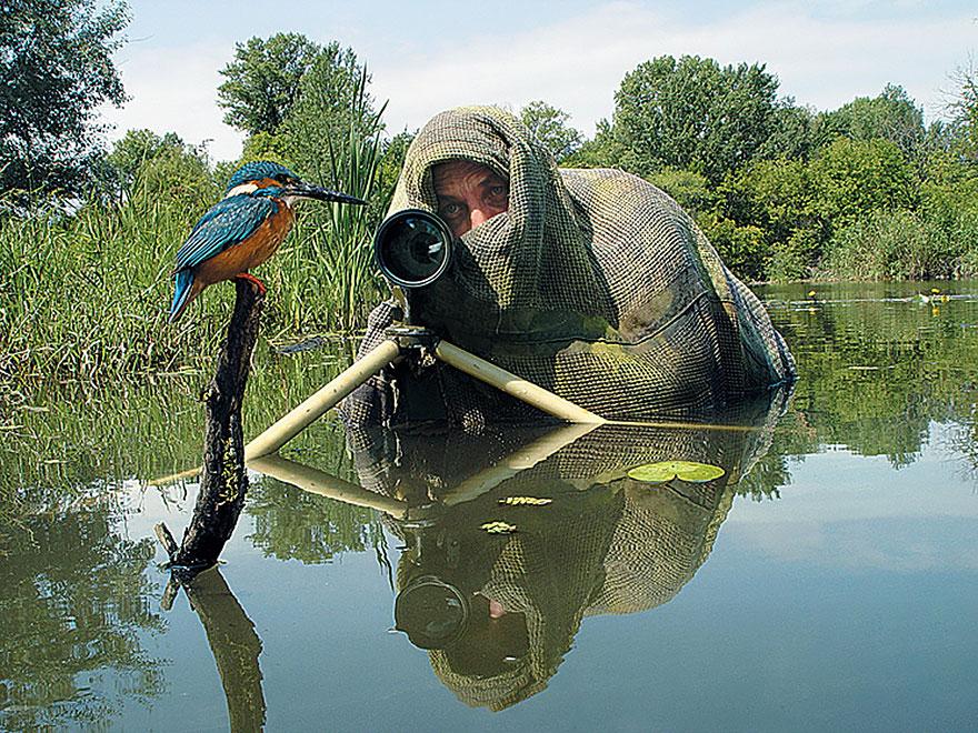 nature photographers 33 birds