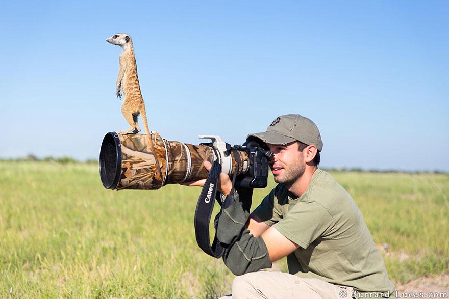 nature photographers canon