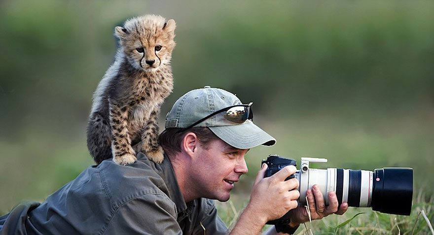 nature photographers cub
