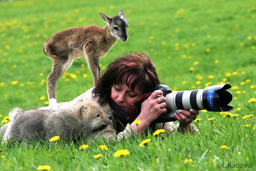 nature photographers cute