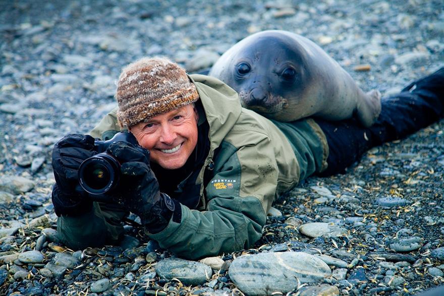 nature photographers seal