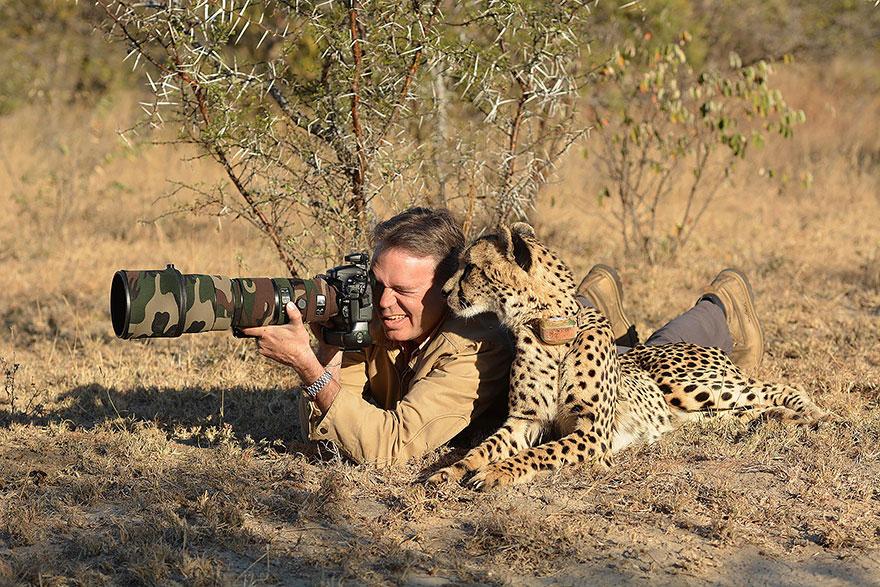 nature photographers tiger